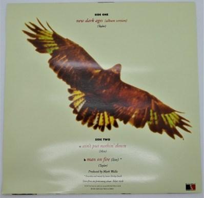 Vinyle Maxi 45 tours Non Officiel