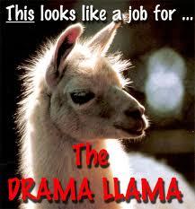The Drama! The Drama!