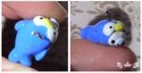 Tiny Penguin Mamegoma