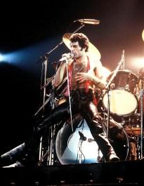1979 - Freddie