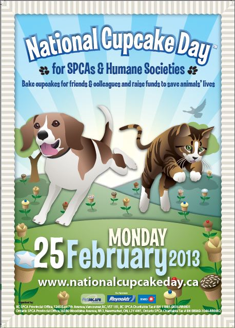 Lost Paws: National Cupcake Day for the Kingston Humane Society
