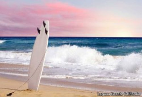 Surf's up! Are you ready to find the perfect wave?