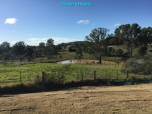 [26] Marburg 10 Acres - Backyard