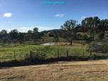 [26] Marburg 10 Acres - Backyard