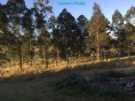 [28] Marburg 10 Acres - Land Outside Front Entrance