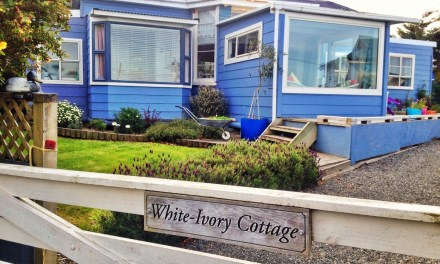 White Ivory Cottage Accommodation Riverton