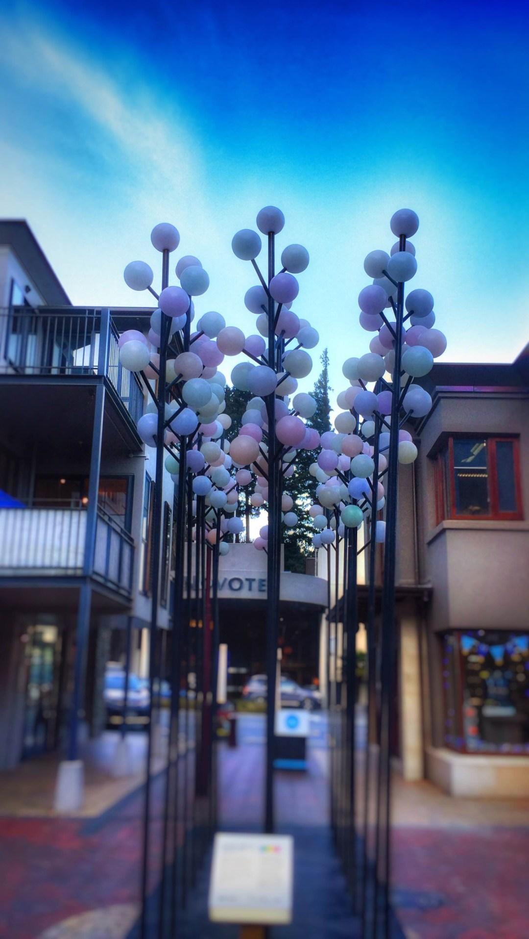 Queenstown Life Week in Pictures