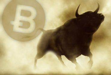 Bitcoin Bullish QueenWiki