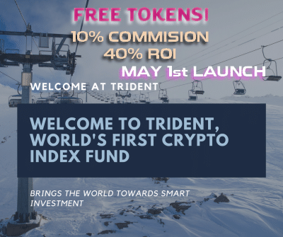 Trident Crypto Index Fund