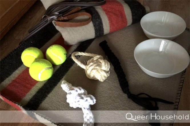 Puppy Stuff - Queer Household