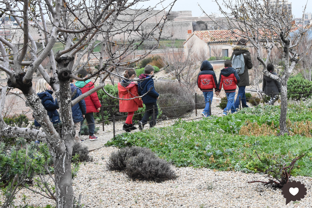 jardinmigrations3