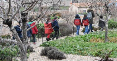 Explorer le Jardin des Migrations en famille