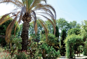 Jardin Botanique Borely Marseille