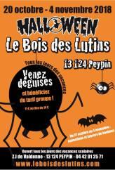 Halloween au Bois des lutins