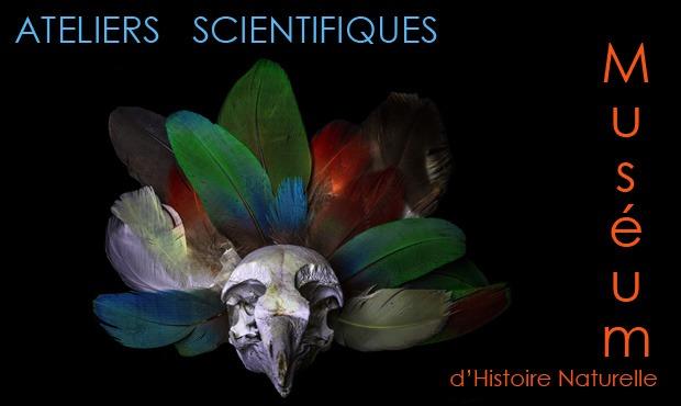 Ateliers au Muséum d'Histoire Naturelle d'Aix en Provence