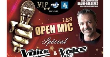 Finale Régionale des présélections de « The Voice » et « The Voice Kids »