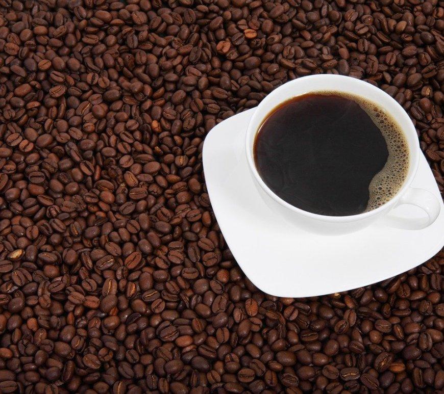 Café do Caparaó conquista selo de Indicação Geográfica