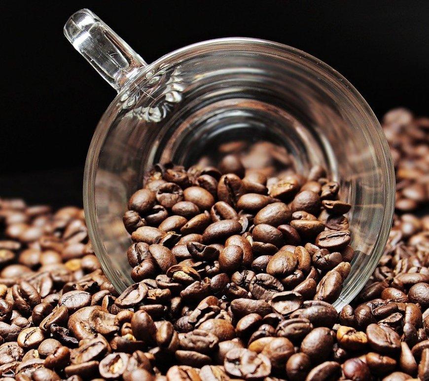 Cafeicultores de Garça (SP) iniciam processo para selo IG