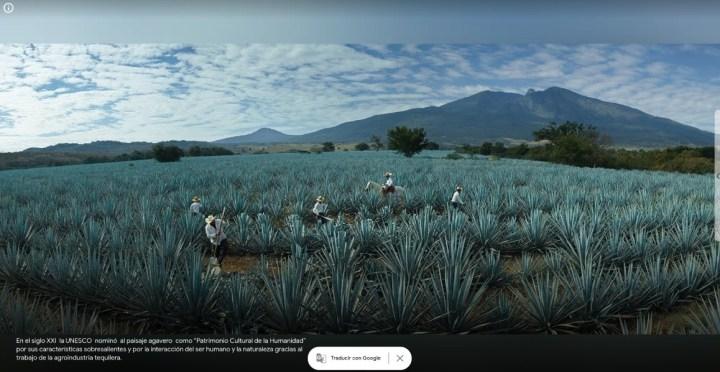 Google Arts Mexico 3 divulgacao