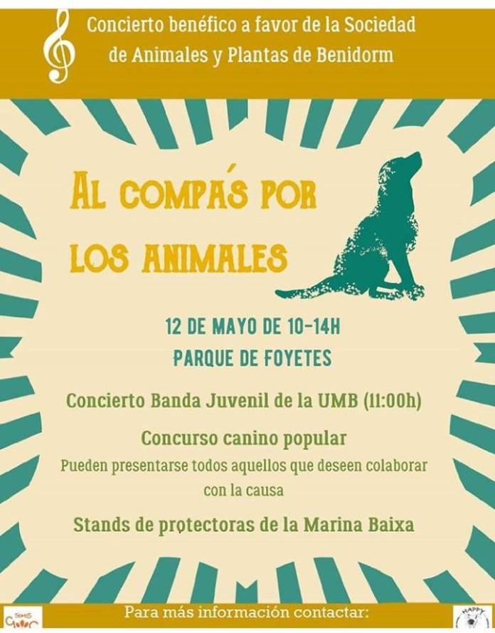concierto banda juvenil animales plantas 2019 benidorm