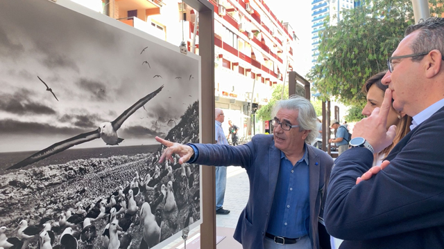 Benidorm Exposicion Genesis La Caixa 2019