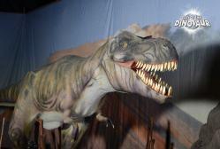 Dinosaurios no IFEVI