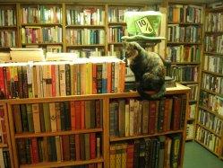 Intercambio de libros