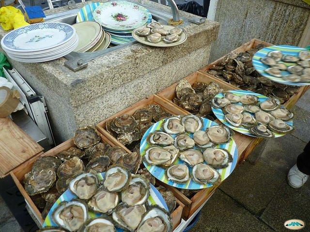 Los mejores blogs de Gastronomía de Vigo