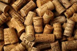 Festa do Viño da Casa