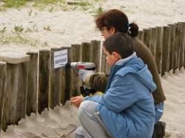 Taller de voluntariado ecológico para adultos y niños