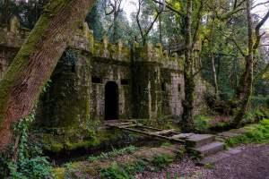 Castillo de Aldán, o bosque encantado