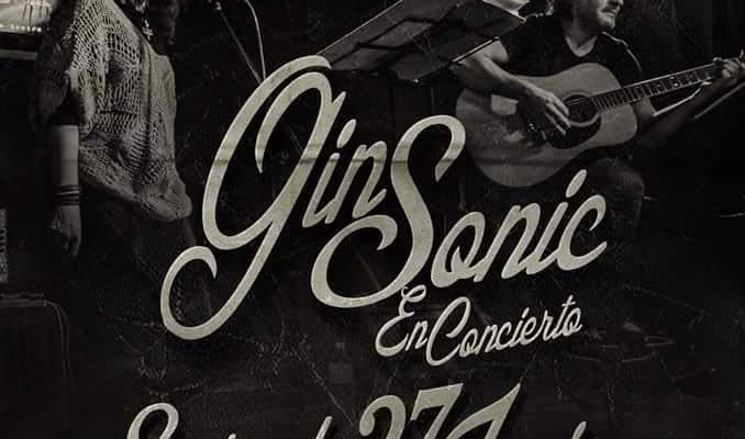 gin sonic