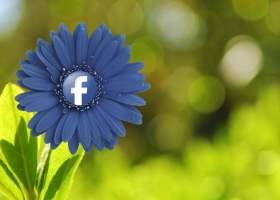Cómo personalizar el feed de noticias de facebook