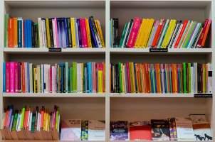 Día del Libro en Vigo 2017