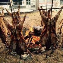 festa do carneiro