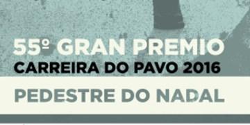 Carrera del Pavo 2016 de Vigo