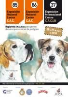 Exposición Canina 2018 Vigo