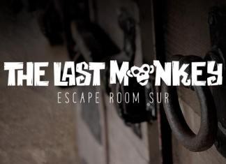 the last monkey