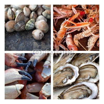 """Résultat de recherche d'images pour """"coquillage et crustacés"""""""