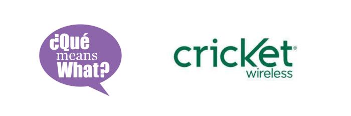 Cricket Ambassador Que Means What