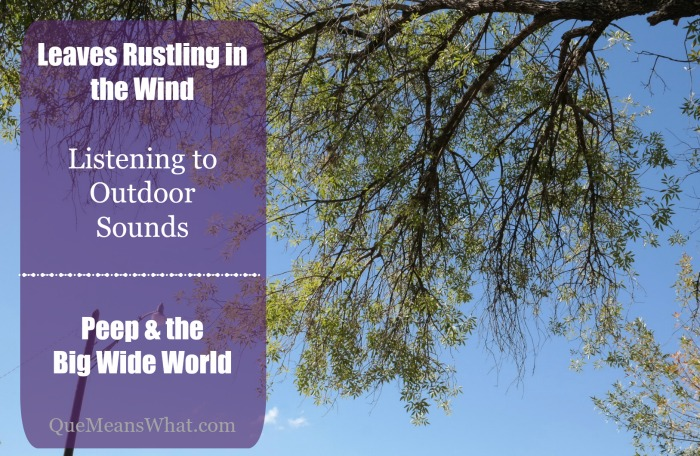 Leaves Rustling in the Wind  Listening to  Outdoor Sounds   Peep & the  Big Wide World  QueMeansWhat.com