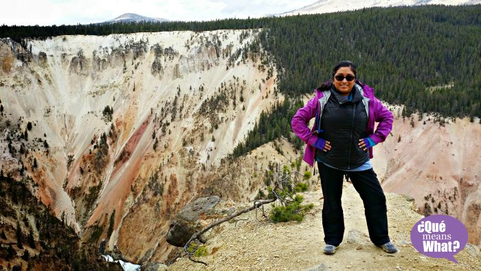 Grand Canyon at Yellowstone National Park - QueMeansWhat #LetsCamp #Hazloepic #Alex14