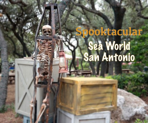 Spooktacular-Sea-World-San-Antonio-Que-Means-What
