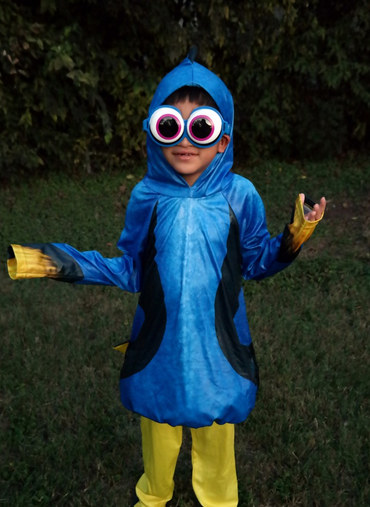 Finding Dory Costume - QueMeansWhat.com