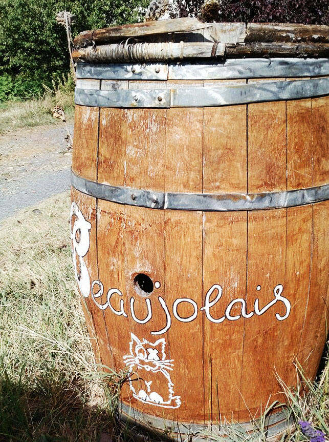 Beaujolais barrel