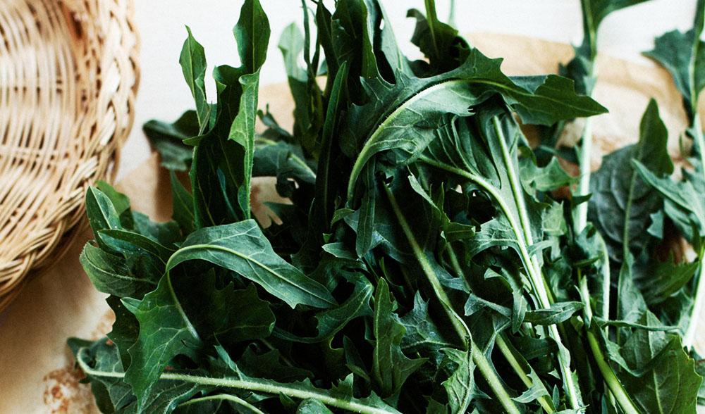 Dark leafy greens - Dandelion greens