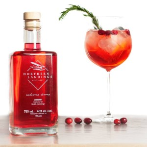 Ginberry Rosemary cocktail
