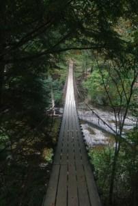 Swinging bridge at Falls Creek Falls in Tennesee