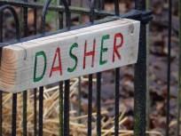 Where's Dasher?