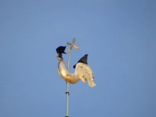 Weather cock with Jackdaws
